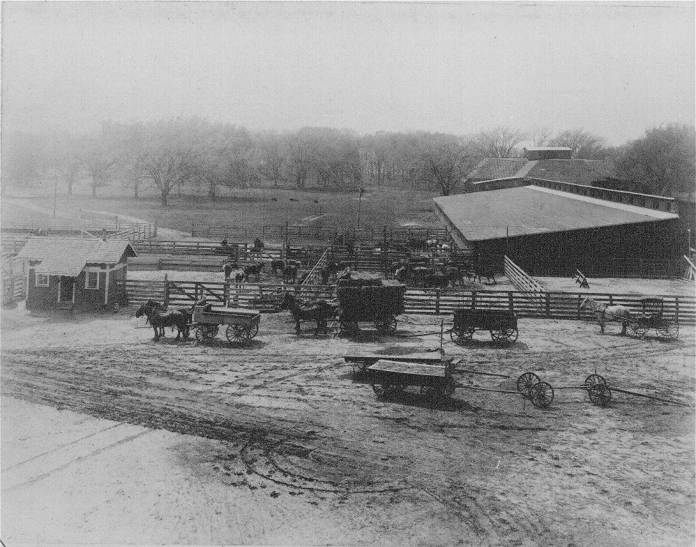 Barns and corrals at the Bismarck Grove, Kansas