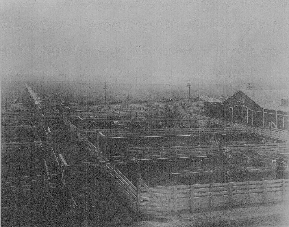 Corrals and barn of the old fairgrounds at Bismarck Grove, Kansas