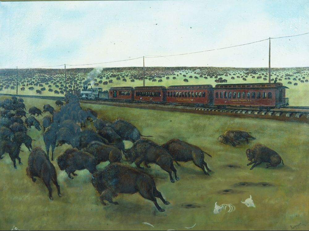 Shooting Bison From a Union Pacific Train