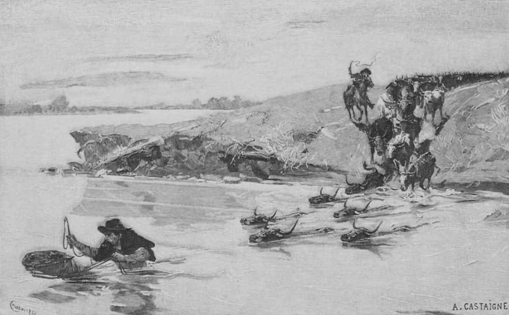 Herd Swimming a River