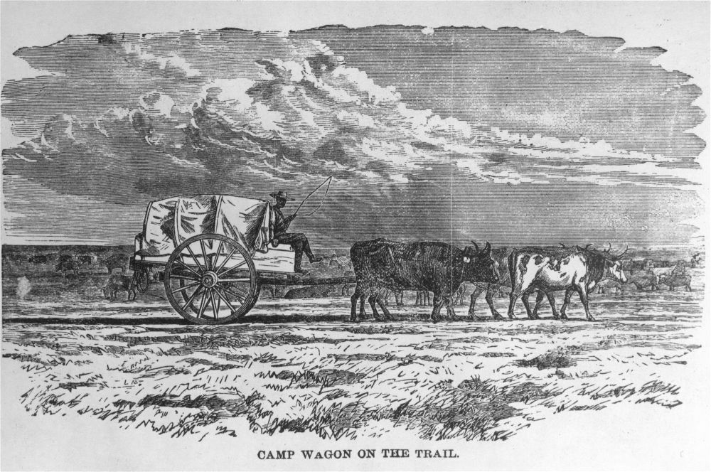 Camp wagon on the trail