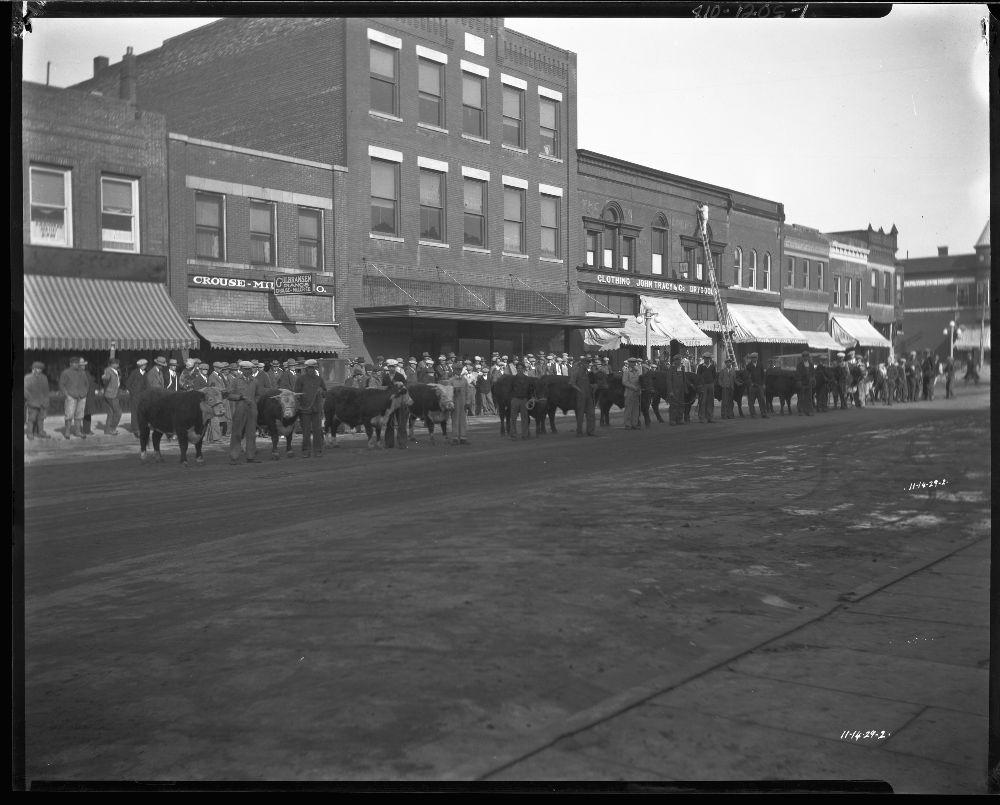 Livestock show, Marysville, Kansas
