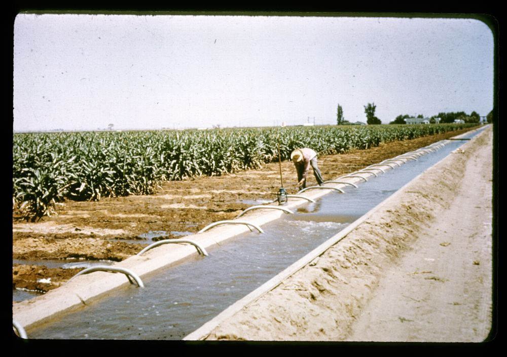 Siphon irrigation