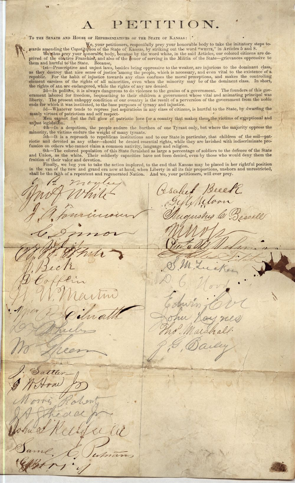 A petition on Negro suffrage
