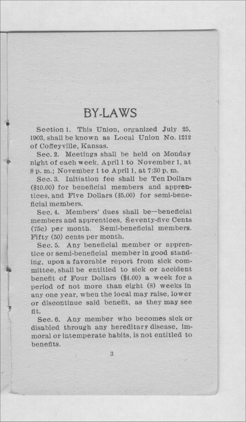 By-laws and trade rules of Carpenter's Union No. 1212 - 3