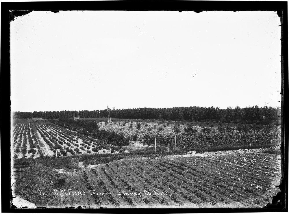 D.M. Frost's farm, Finney County, Kansas