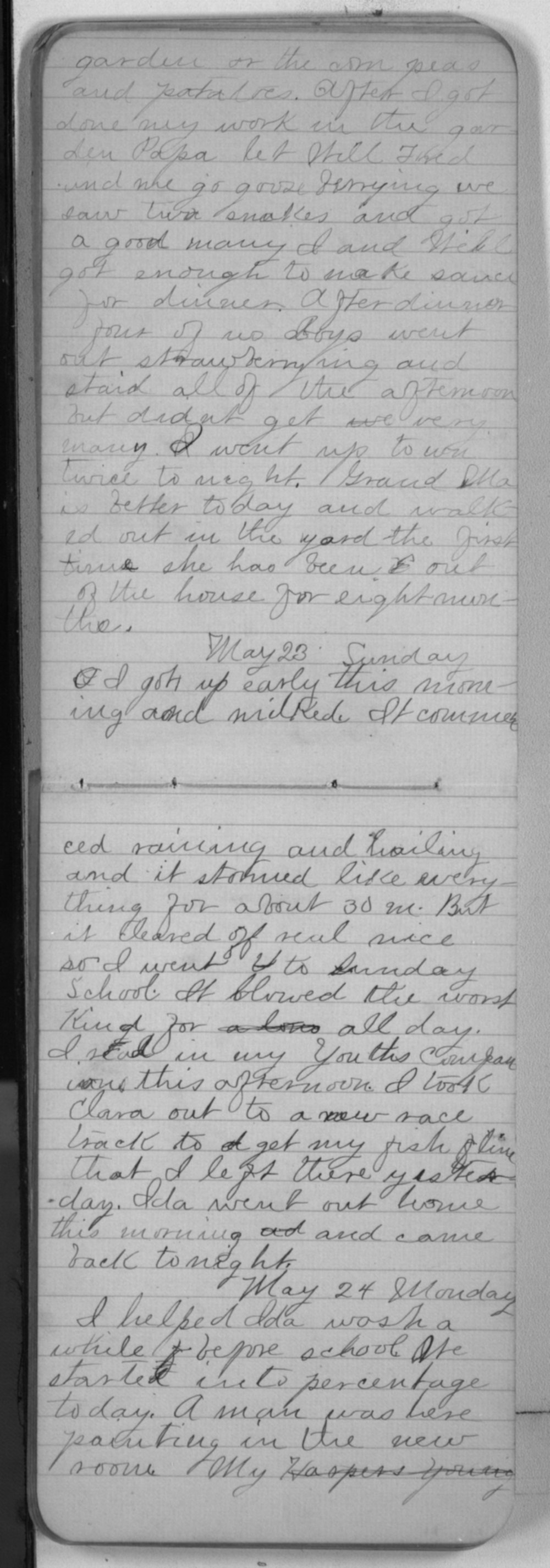 "Edward S. (""Ned"") Beck diaries - May 23, 1880"