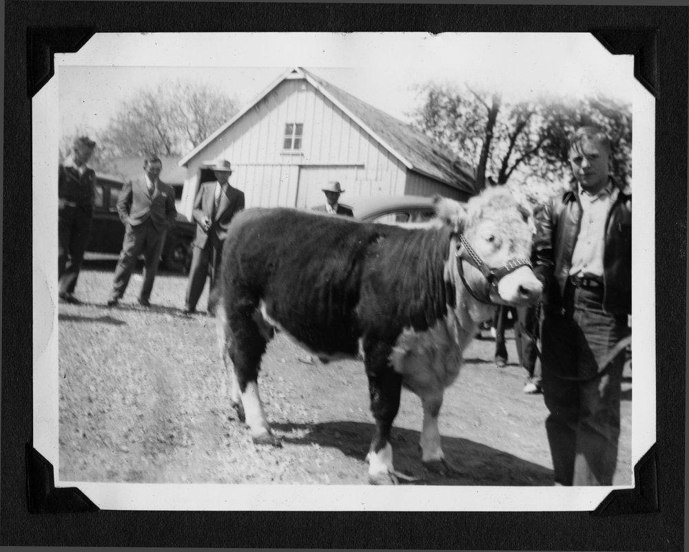 Melvin Brose photograph album - 4-H tour at the Brose farm located southwest of Valley Falls, Kansas, 1948-49.