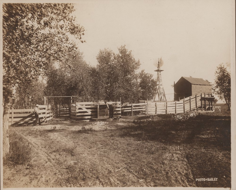 Slaughter house and scales, Gray County, Kansas