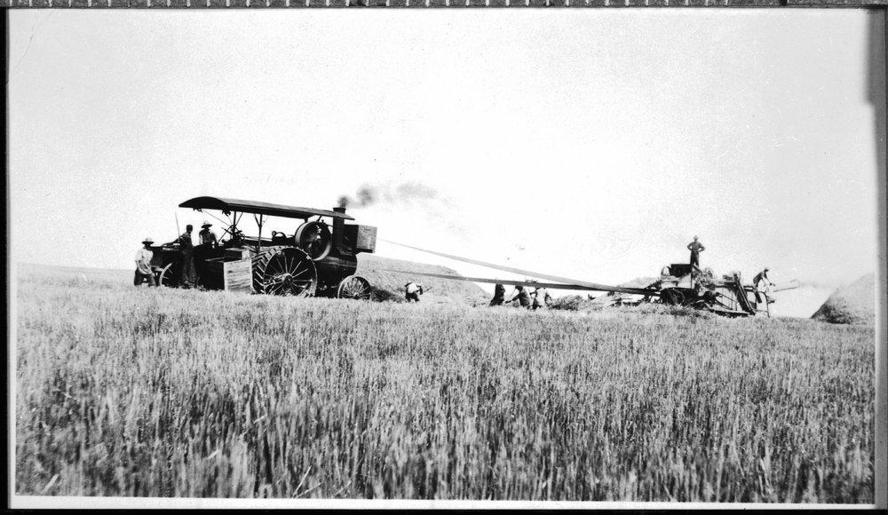 Threshing scene, Finney County, Kansas