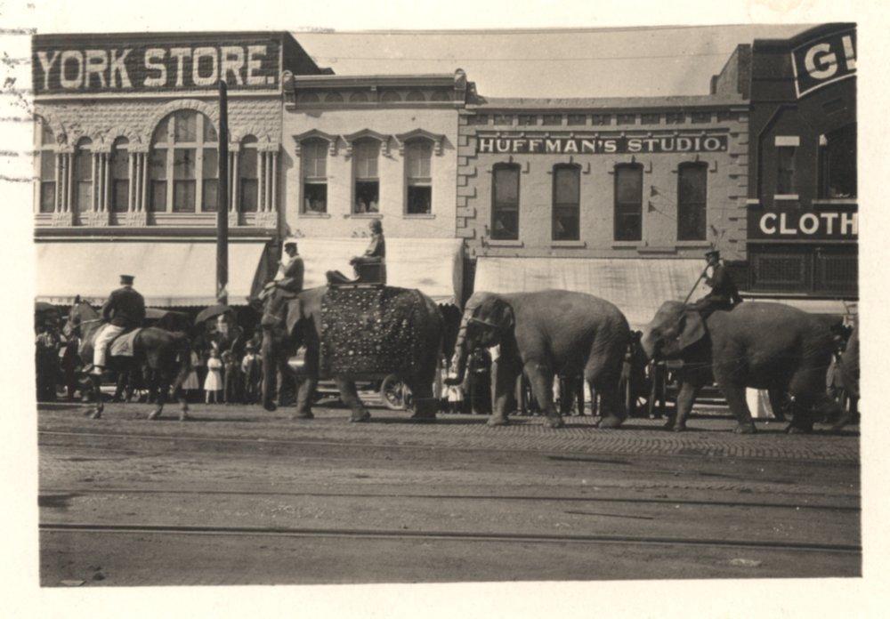Circus parade, Iola, Kansas - 1