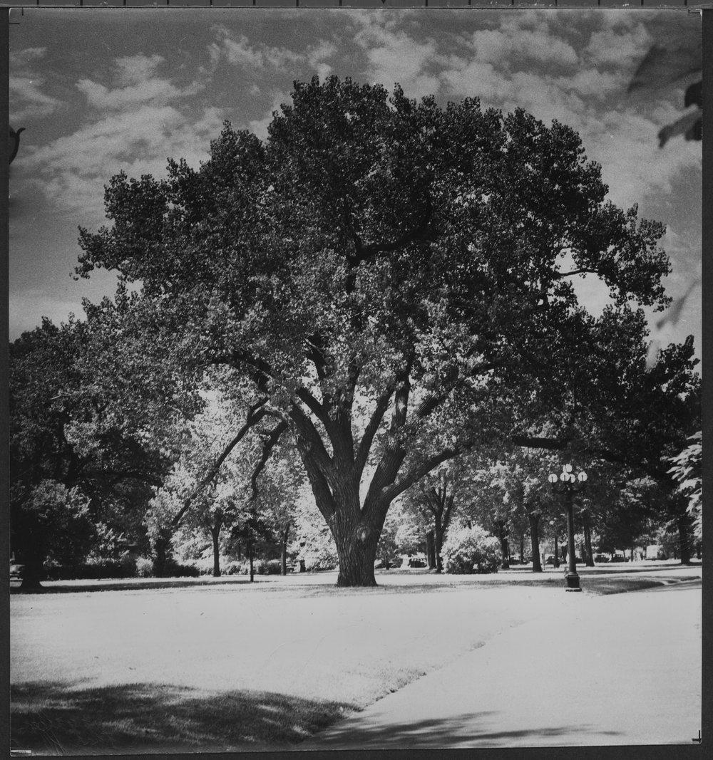 Capitol grounds , Topeka, Kansas