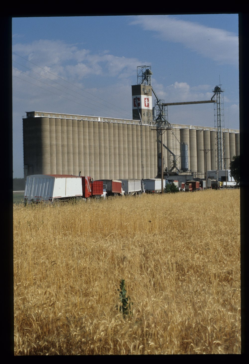 Hutchinson grain elevator, Hutchinson, Kansas - 10