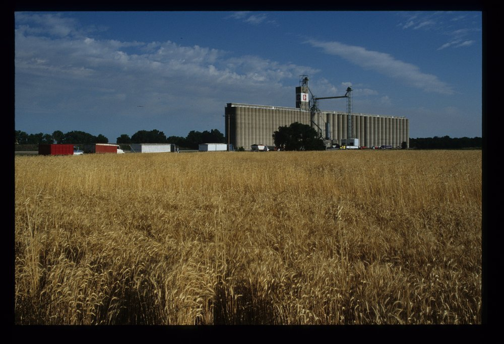Hutchinson grain elevator, Hutchinson, Kansas - 11