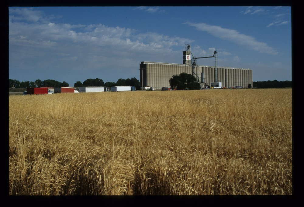 Hutchinson grain elevator, Hutchinson, Kansas - 12