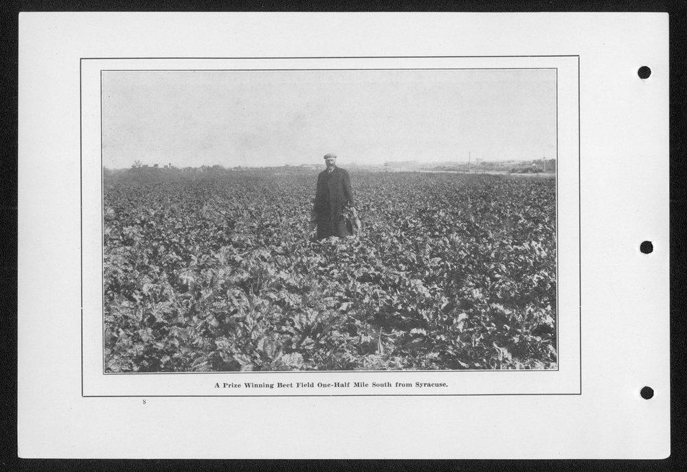 Souvenir, Hamilton County and Syracuse, Kansas - 8