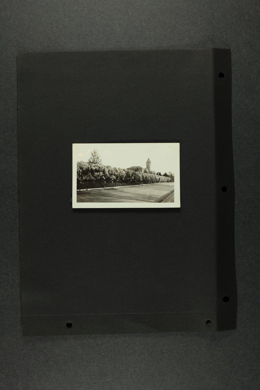 Elizabeth Miller Watkins legacy collection - 2