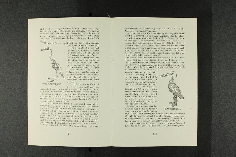 Elizabeth Miller Watkins legacy collection - 5c