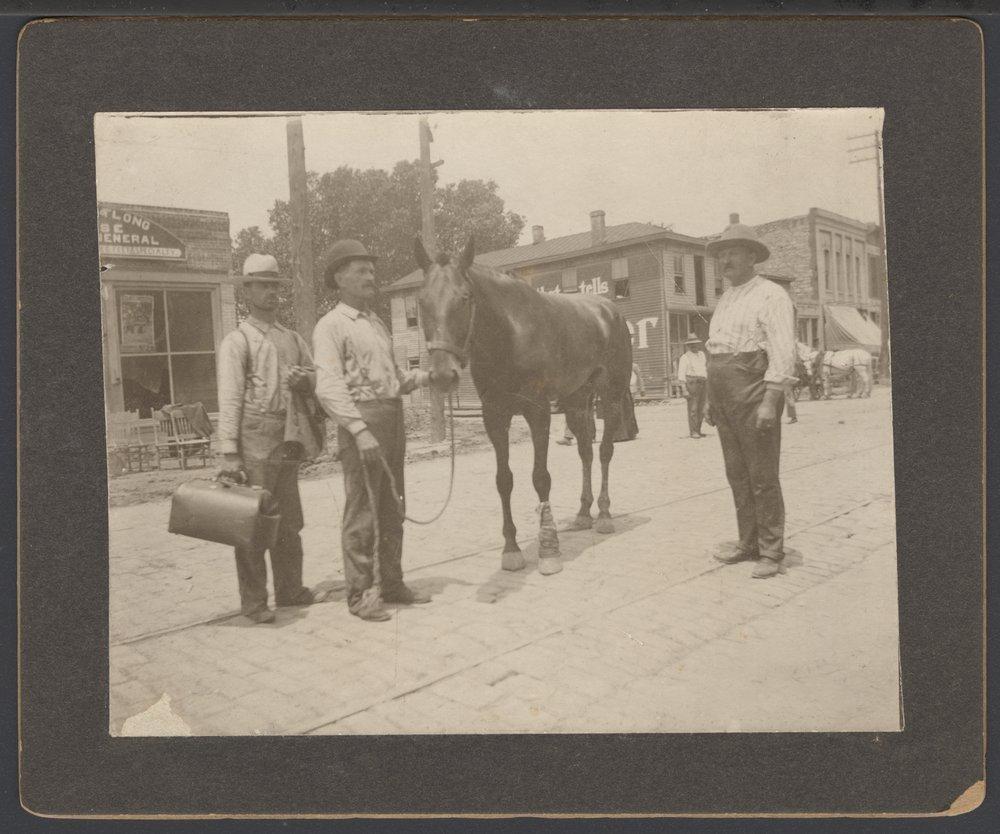 Veterinarian treating a horse in Topeka, Kansas