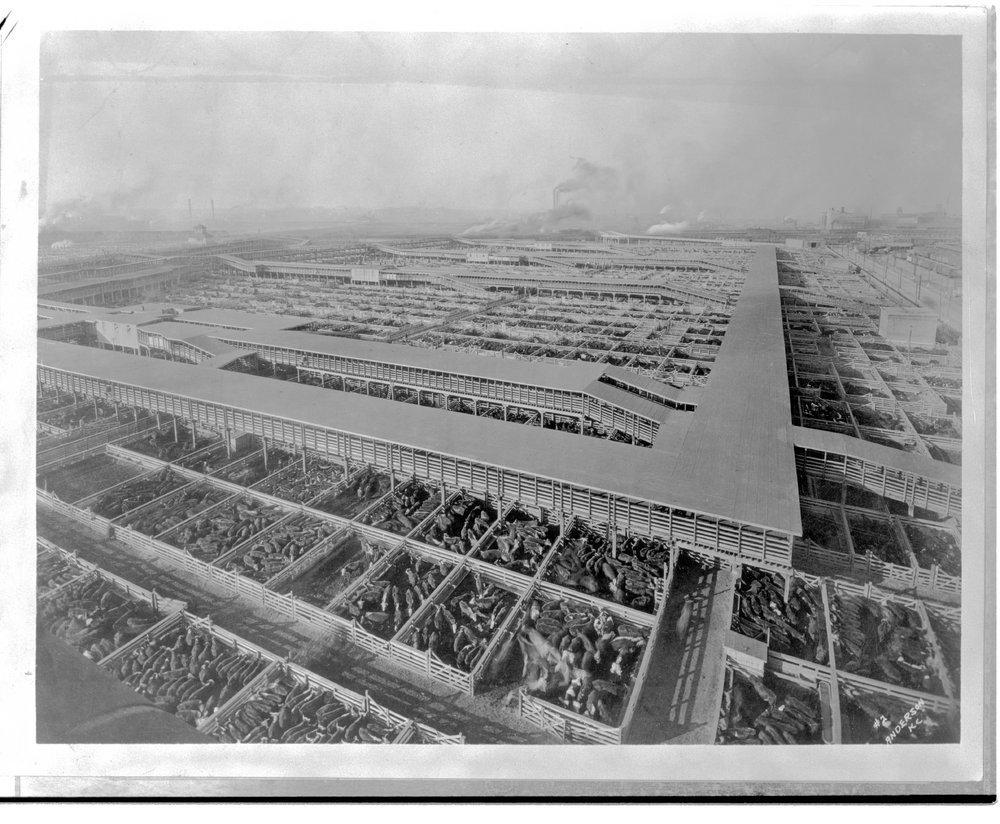 Kansas City Stockyards, Kansas City Missouri