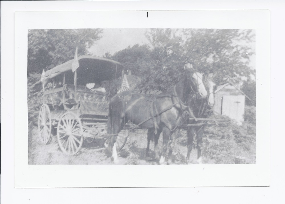 Horse and buggy, Rossville, Kansas