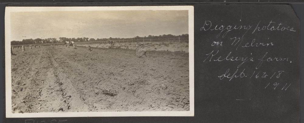 Digging potatoes on Melvin Kelsey's farm in Shawnee County, Kansas - 1