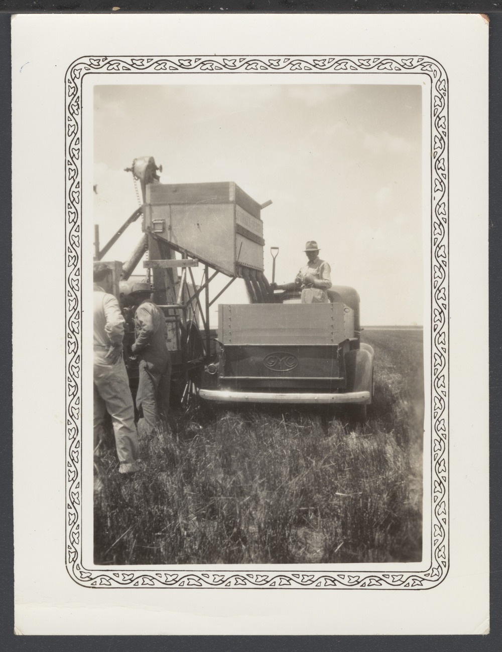 Wheat harvest in Gray County, Kansas