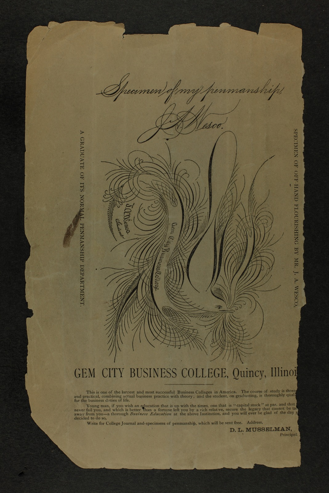 Handbook of Pottawatomie and Riley Counties, Kansas - Back cover