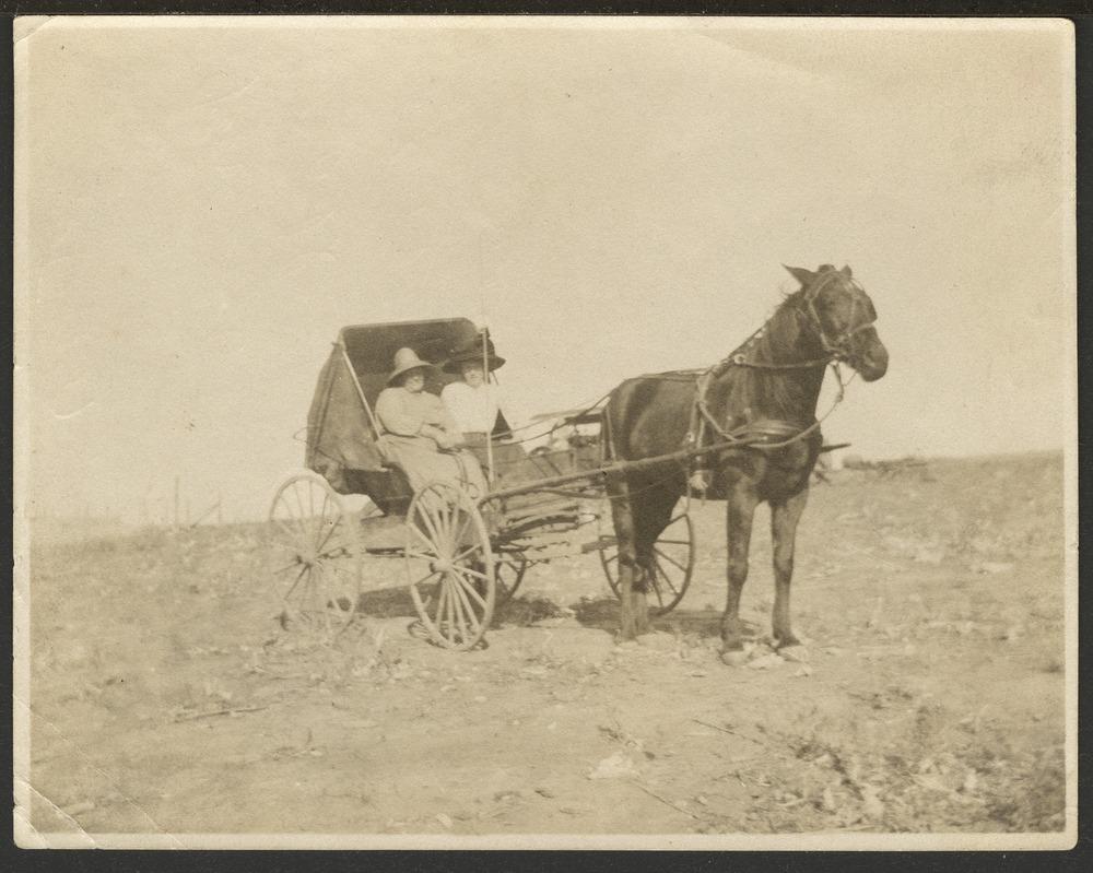 Christena Nicholson and Ellen Nicholson in a horse drawn carriage - 1
