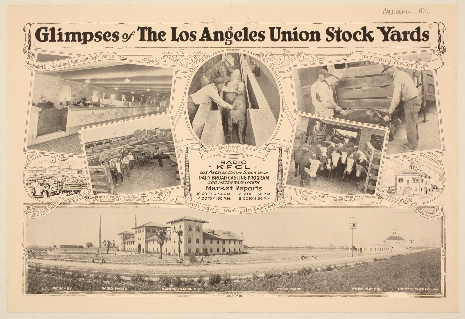 Glimpses of the Los Angeles union stock yards - 1