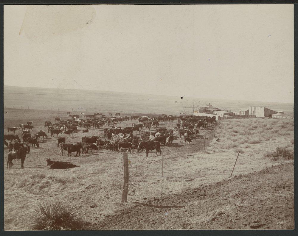 Forbes ranch in Seward County, Kansas
