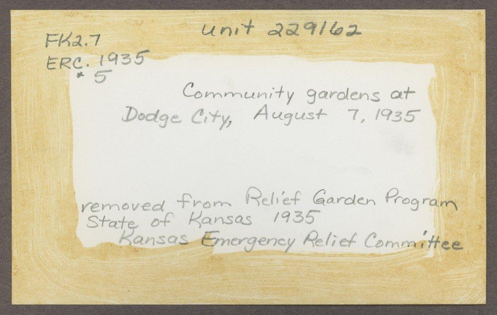 Community gardens in Dodge City, Kansas - 4