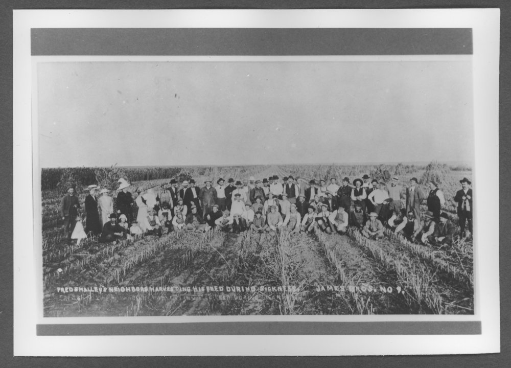 Scenes of Sherman County, Kansas - Fred Smalley's neighbors harvesting his field during illness.