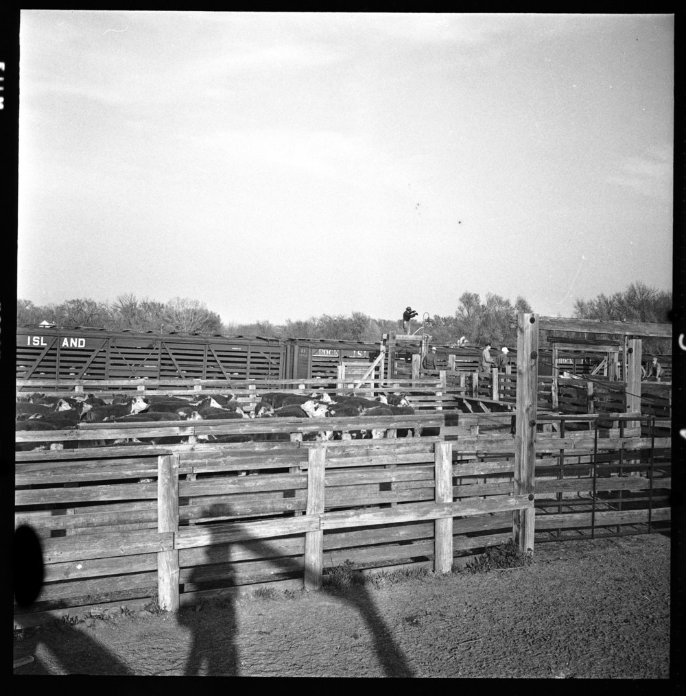 Stockyards, Eskridge, Kansas - 2