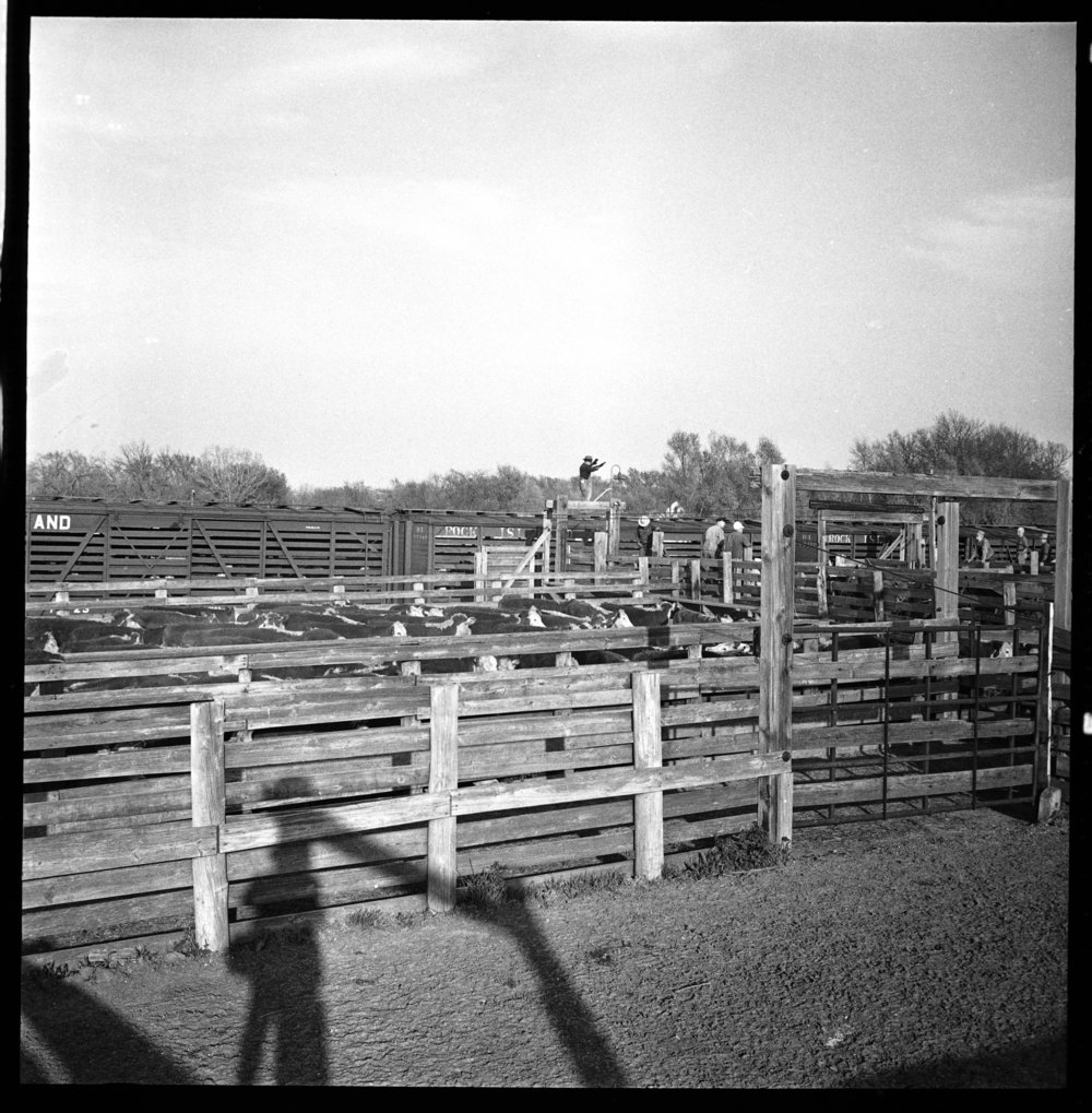 Stockyards, Eskridge, Kansas - 9