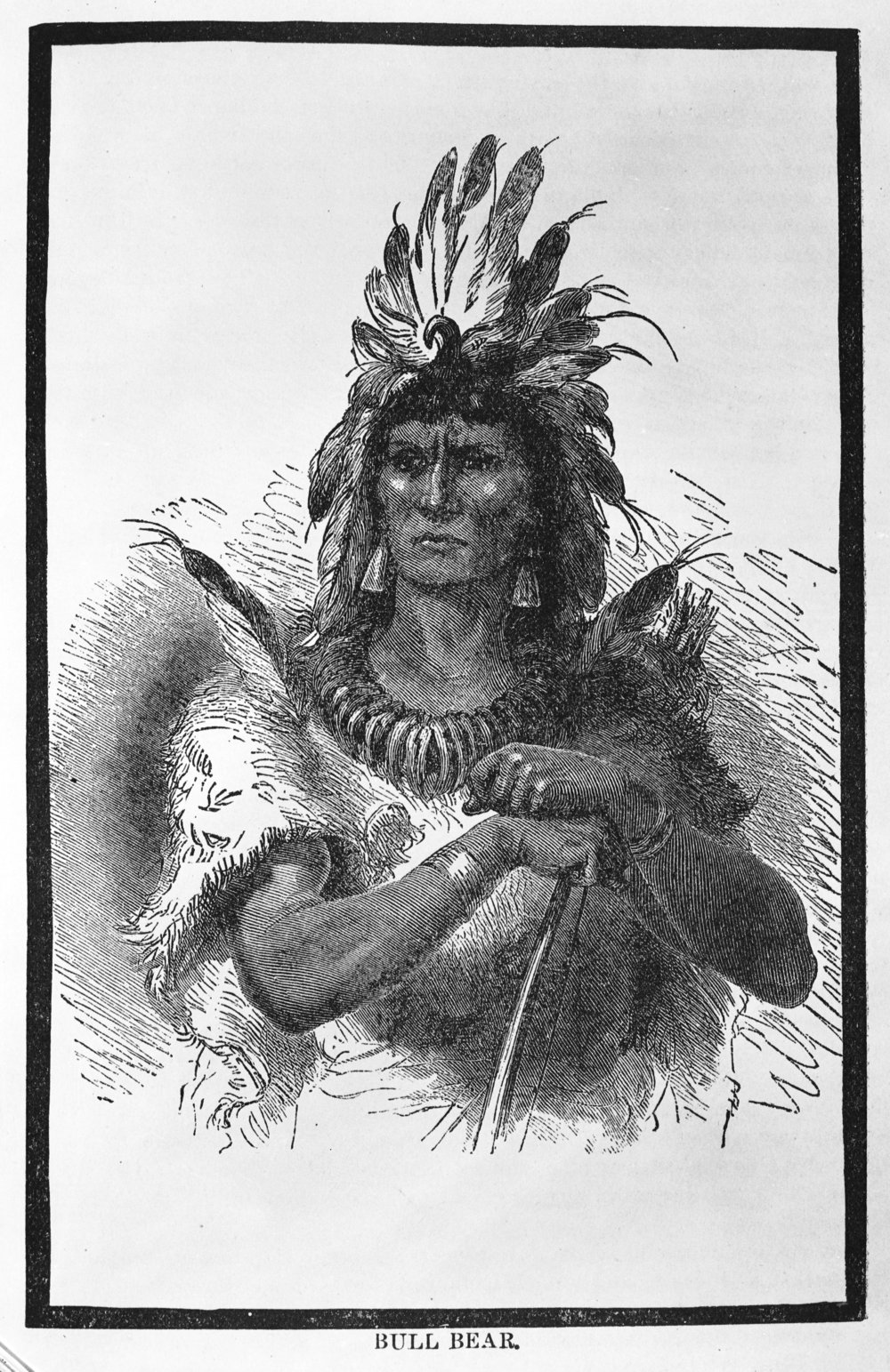 Cheyenne Chief Bull Bear