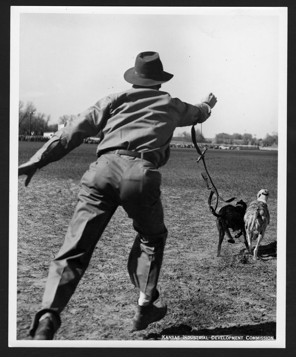 Coursing, Portis, Kansas - 2