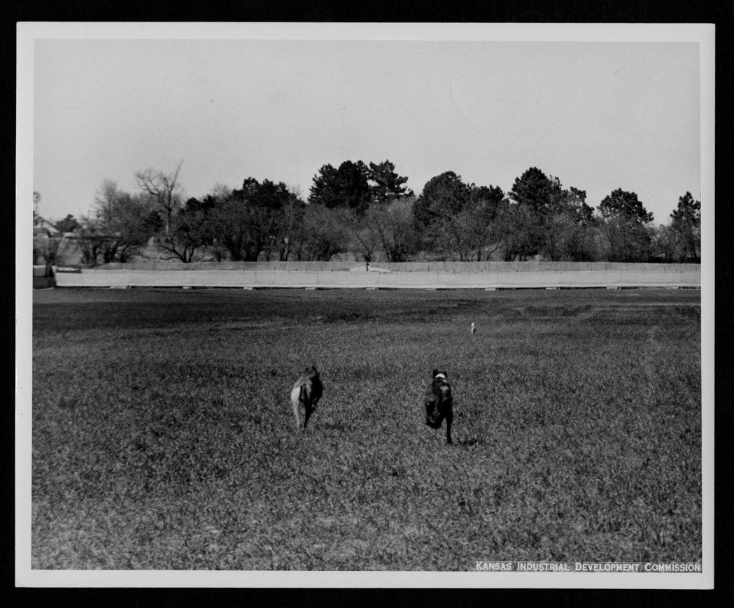 Coursing, Portis, Kansas - 4