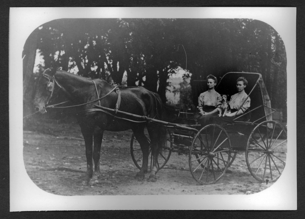 Scenes of Sherman County, Kansas - Horse and buggy carrying two women and a dog.