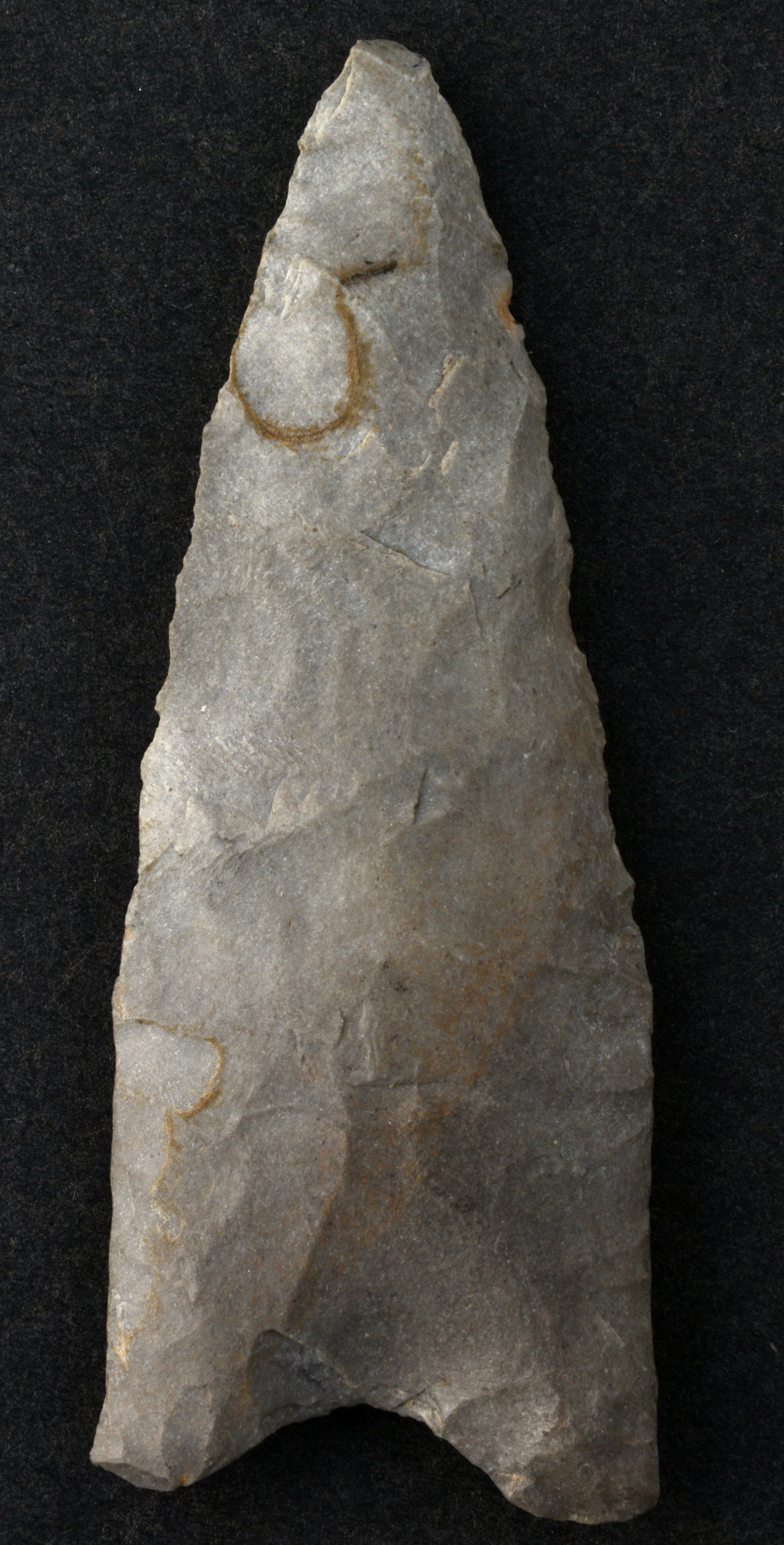 Paleoindian projectile point - 4