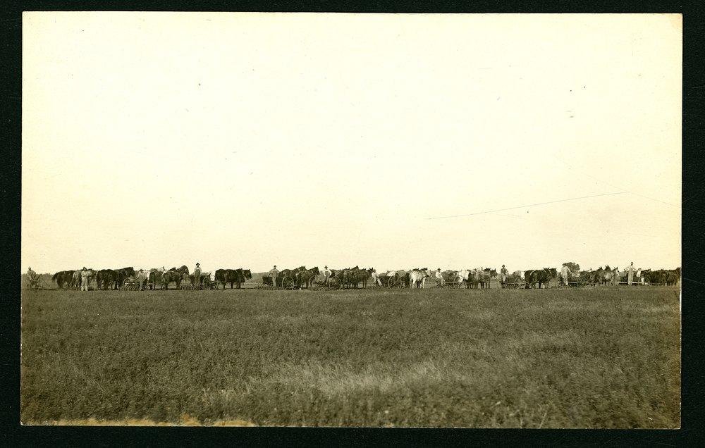 Horse drawn planters in Sedgwick County, Kansas - 1