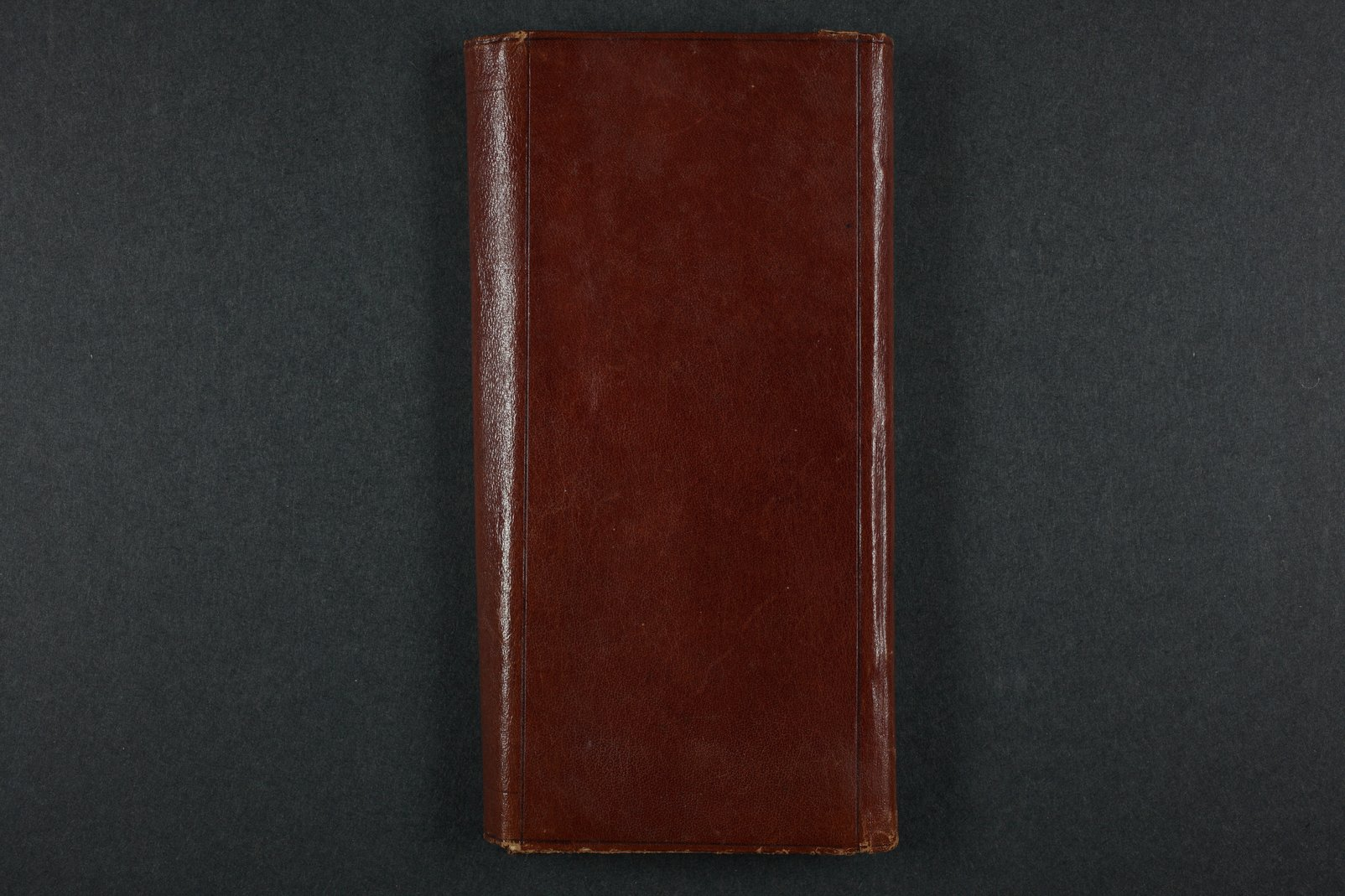 Isaac Tichenor Goodnow diary - 126  [Back cover]