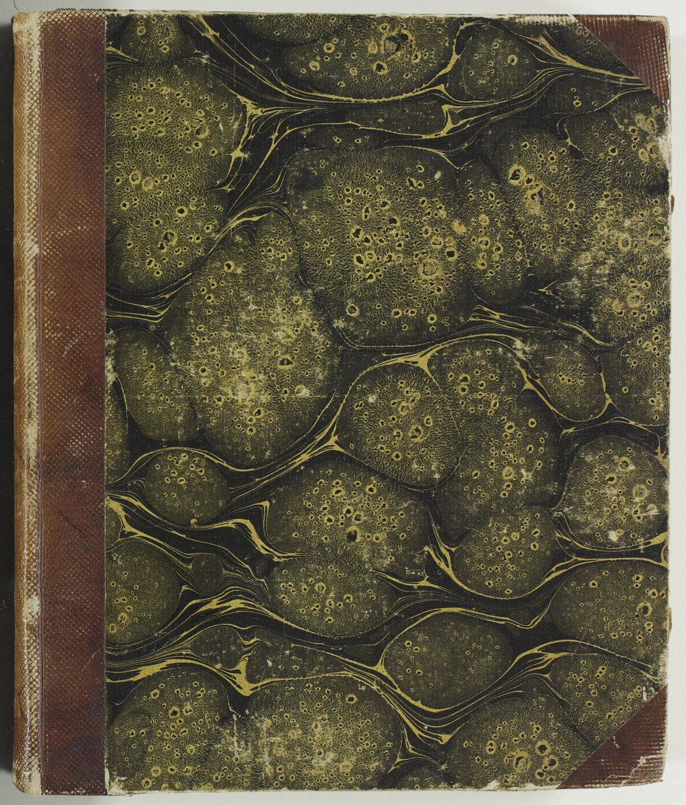 Isaac Tichenor Goodnow diary - Front cover