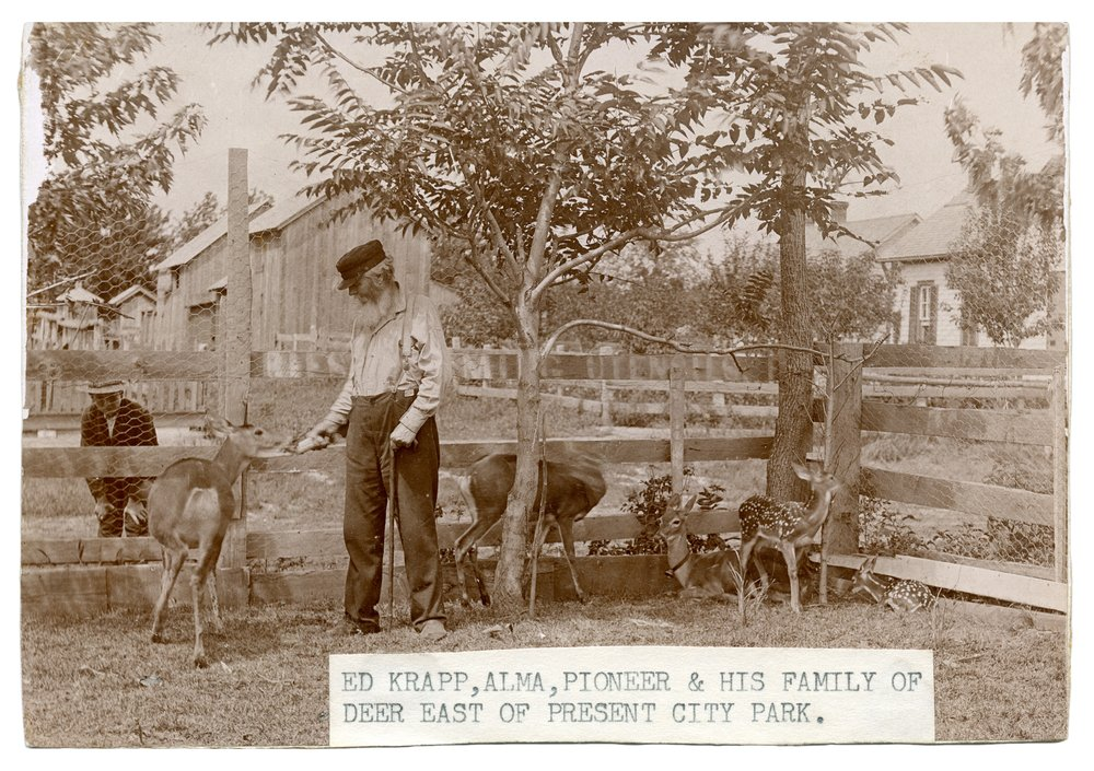 Ed Krapp with pet deer in Alma, Kansas