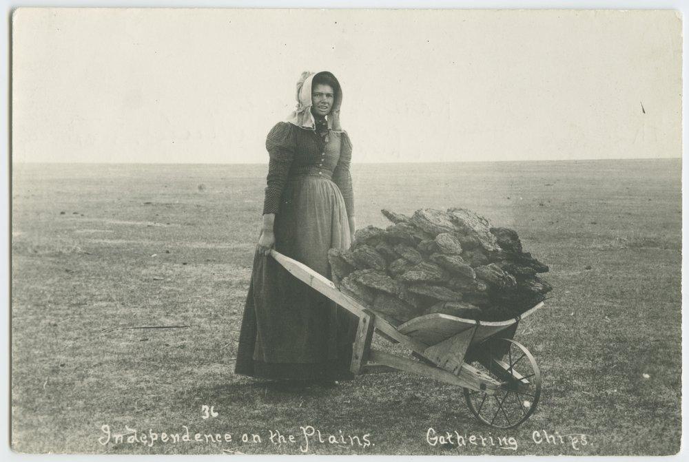 Ada McColl gathering buffalo chips near Lakin, Kansas - 1