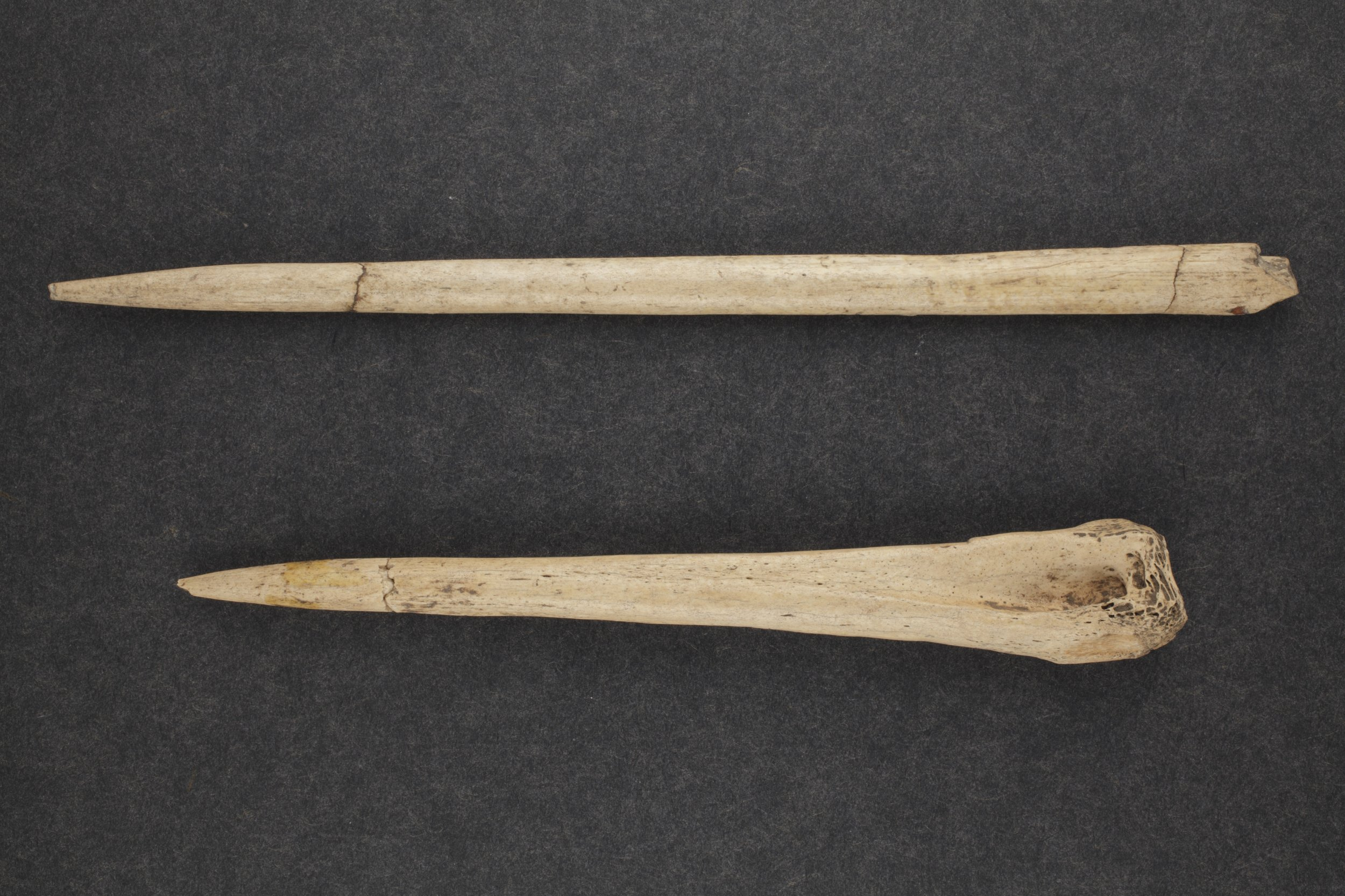 Bone Awls from the Curry Site, 14GR301 - 2