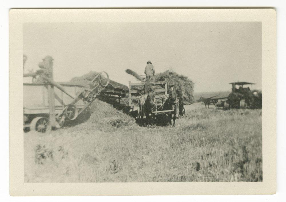 Harvest scenes possibly taken in Shawnee County, Kansas - 1
