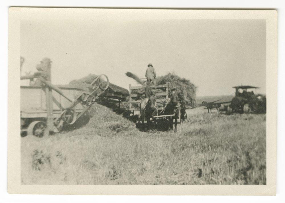 Harvest scenes possibly taken in Shawnee County, Kansas - 3