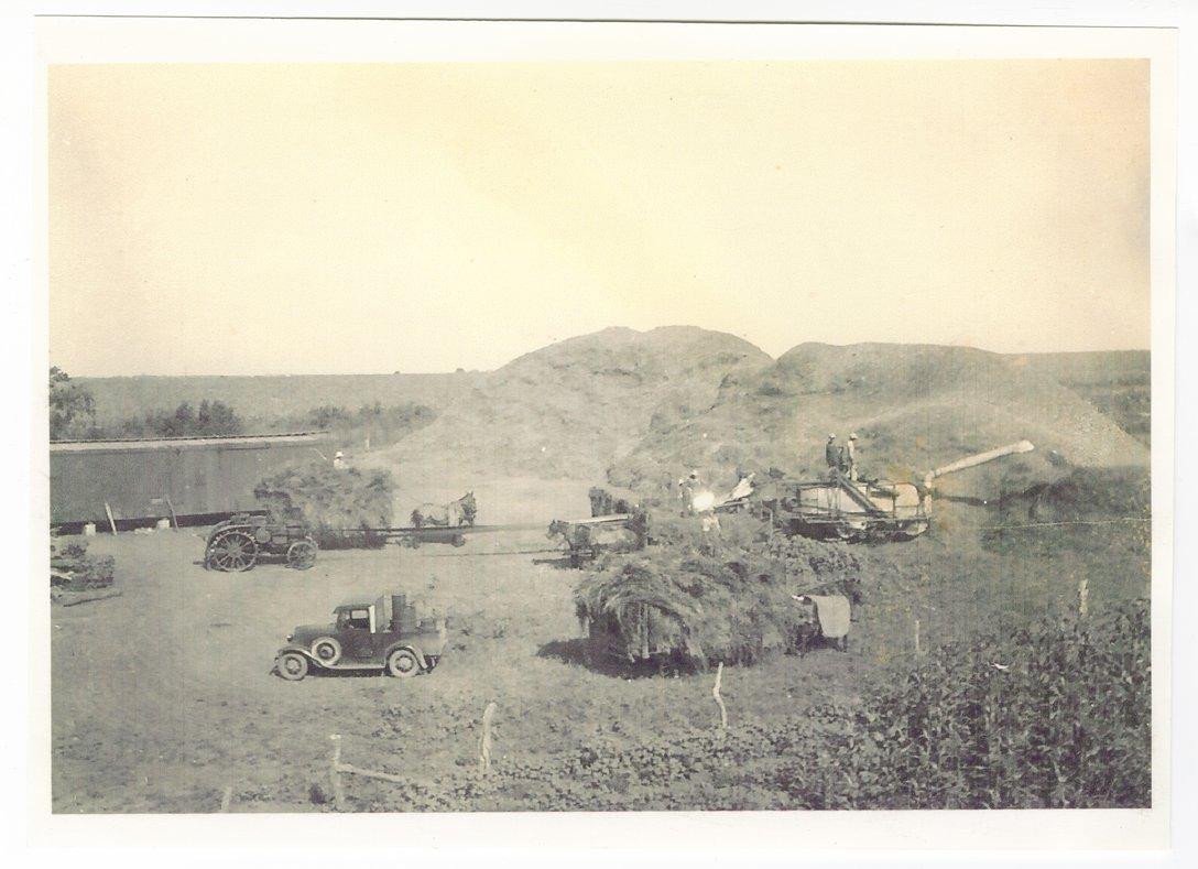 Harvest scenes possibly taken in Shawnee County, Kansas - 4