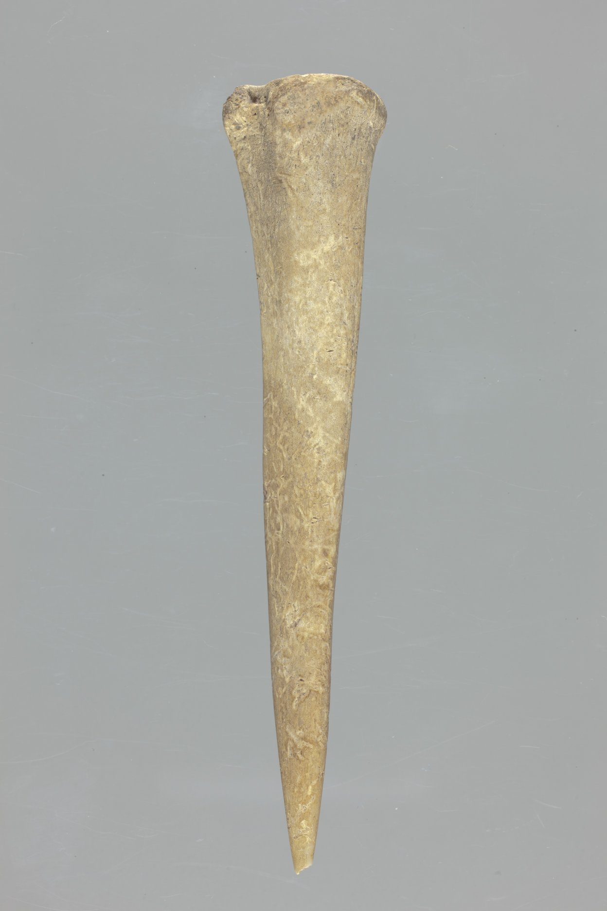 Bone Awl from the Lundeen Site, 14MD306 - 1